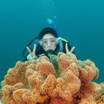 Papel de Parede - Mergulho no Japão - Coral Diving-14