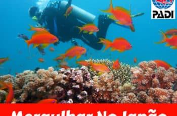 curso de mergulho autonomo