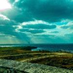 Papel de Parede - Mergulho no Japão - Coral Diving